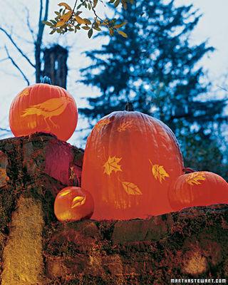 La102831_1007_pumpkinslit_xl