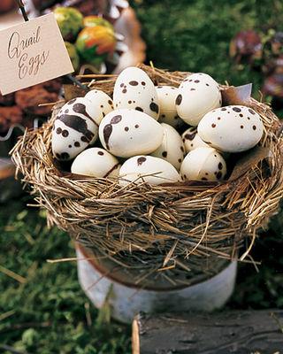 Mla102670_fal07_quail_egg_xl