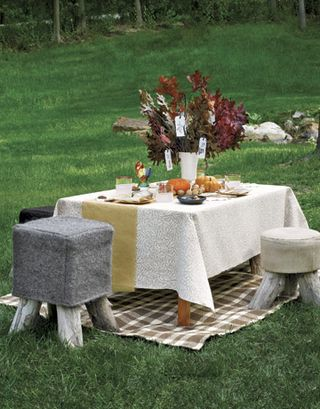 Kids-table-thanksgiving-cp1106-de