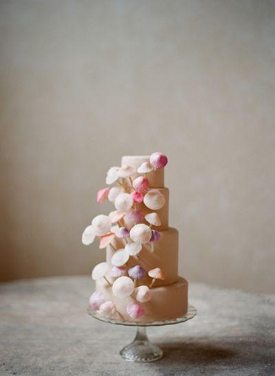 Mushroom-cake-erica-obrien