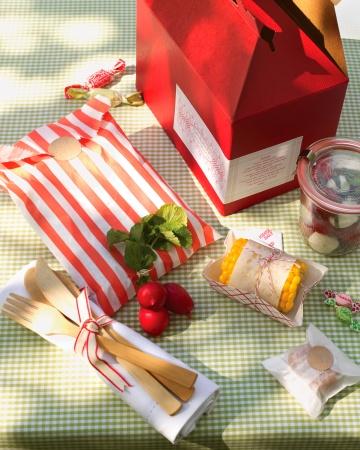 Msw_sum06_picnic_vert