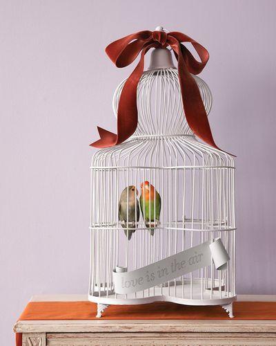 Mwd104873_fall09_birds10_hd