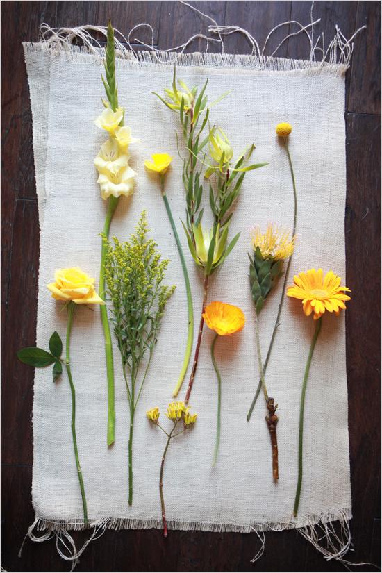Yello_flower_guide