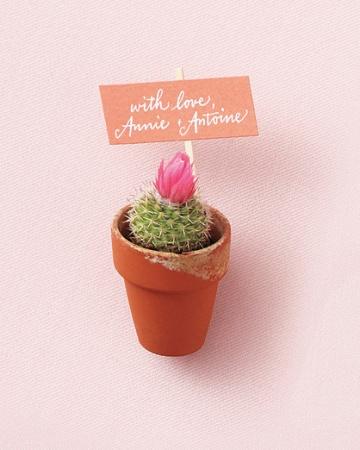 Favors-cactus-mwd107607_vert