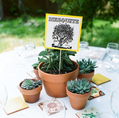 Desert-wedding-centerpieces