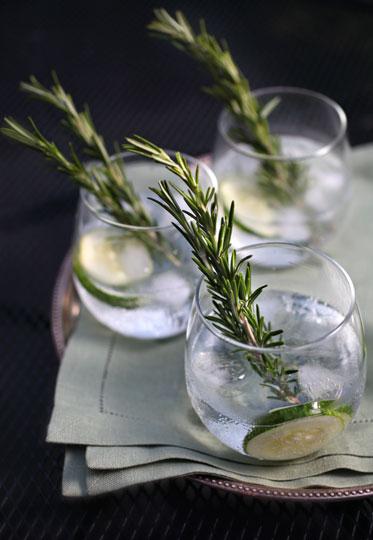 081810_lizv_gin2