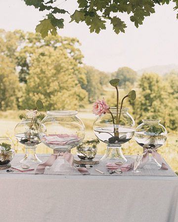 Mwa102418_spr07_book01_xl